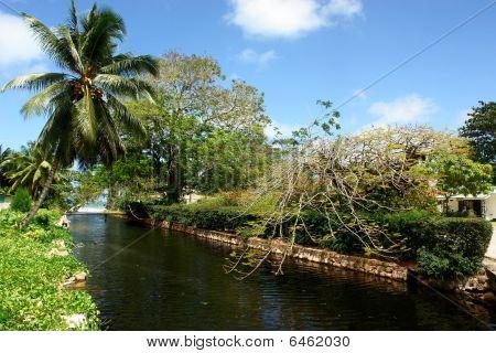 Seychelles. Island Praslin.