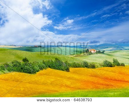 Golden field and Tuscany landscape, Italy