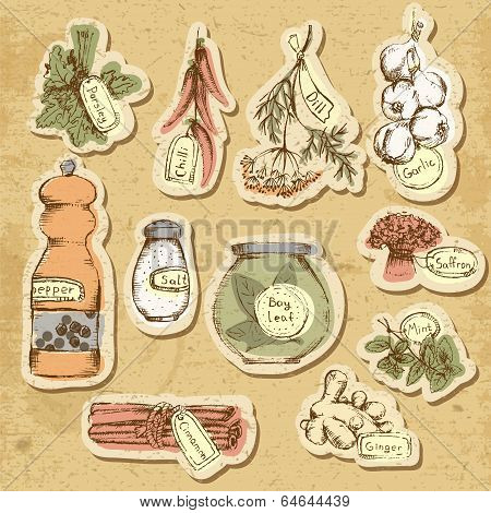 Set of spices and herbs.