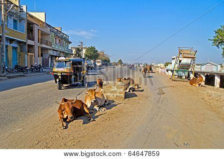 On Porbandar Street