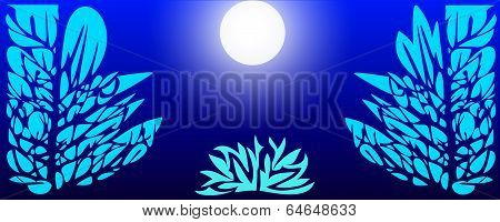 Night Forest In The Moonlight