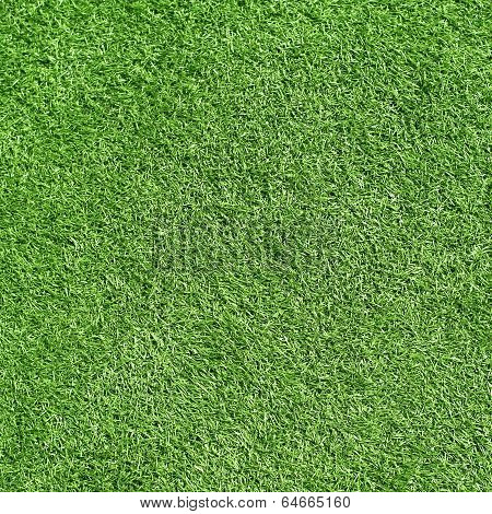 Green grass, artificial football coverage