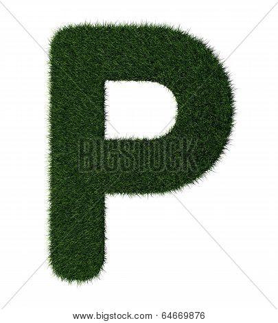 Grass alphabet-P
