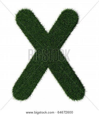 Grass alphabet-X