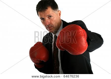Bussines man with boxing gloves on