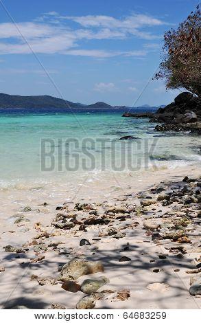 Tropical Beach Summer Day Landscape