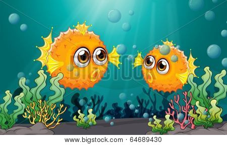 Illustration of the two puffer fishes under the sea