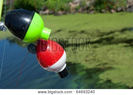 Fishing bobbers over water