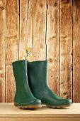 stock photo of work boots  - Green rubber boots - JPG