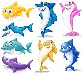 picture of aquatic animal  - Illustration of a group of colorful sharks on a white background - JPG