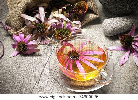 Echinacea purpurea. Cup of echinacea  tea on wooden table