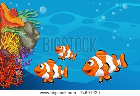 Illustration of clown fish swimming underwater