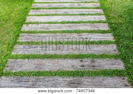 Block Walk Path In The Garden With Green Grass