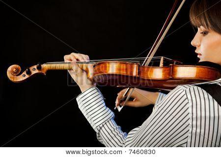 Violinist Profile