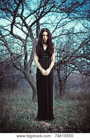 Portrait Of Beautiful Goth Girl Amongst The Faded Trees