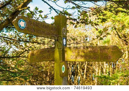 Closeup on tourist Sign posts in village of Ravenscar UK.