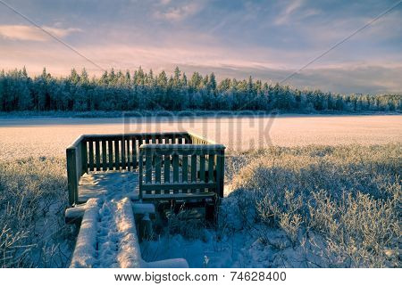 Sunlit Frozen Viewpoint