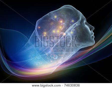 Virtual Intellect