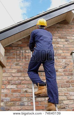 Workman Up A Ladder