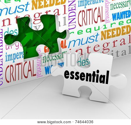 Essential word on puzzle piece filling a hole on a wall with integral, critical, imperative, must, needed, wanted, fundamental, critical, and undeniable