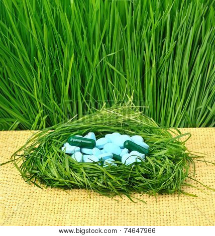 Pills, Tablets And Wheat Grass In The Nest