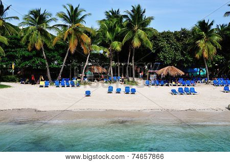 Beach Under The Palms
