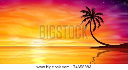 A Beautiful Ocean Sunset, Sunrise with Palm Tree