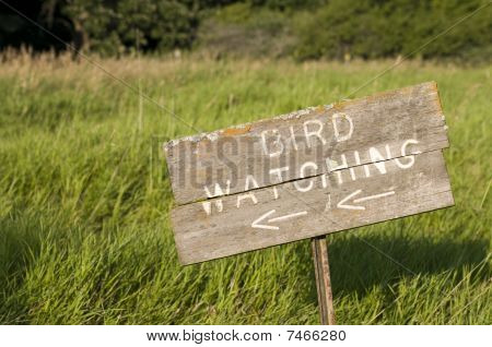 Bird Watching Sign
