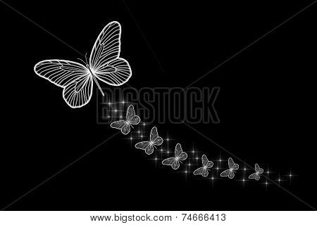 Florescent White Butterflies