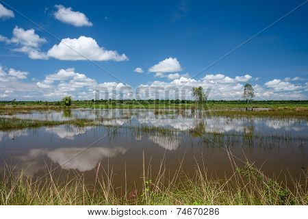 Idyllic Lake With Reflections Of Clouds