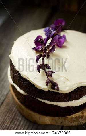 Small Chocolate Torte With Cream