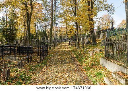 Cemetery In Vilnius