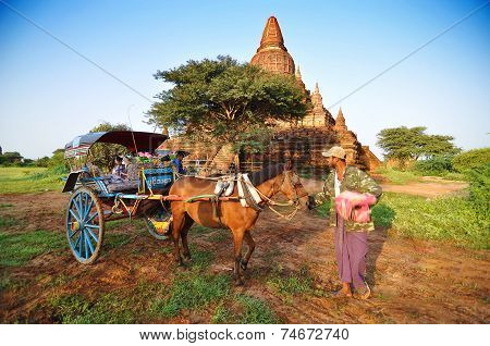 Bagan, Myanmar - October 9, 2013: Burmese Man With Pony Cart At Bagan Valley