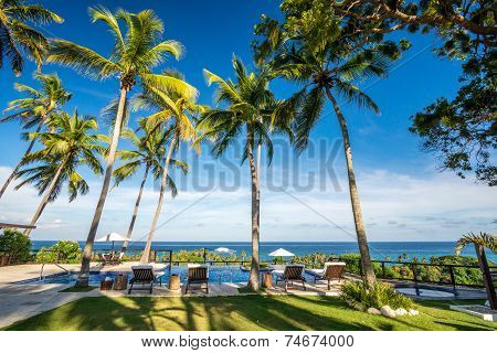 Deckchair lounger with palm trees and infinity pool in Barahona Dominican Republic