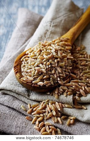 Organic spelt wheat on a wooden spoon