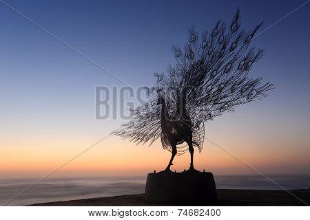 Peacock Standing Proud -  Sculpture Silhouette Tamarama
