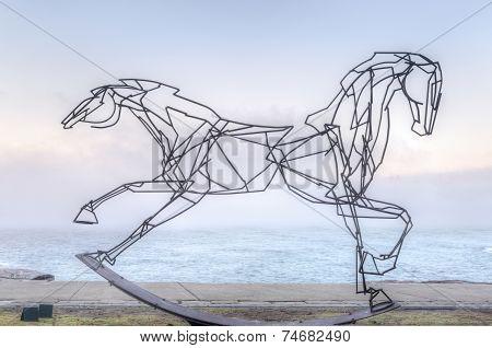 Galloping Along The Coastal Walk Bondi