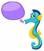 picture of seahorses  - Illustration of a close up seahorse - JPG