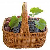 stock photo of crude  - Plum Fruit Crude Basket Ripe Sweet Product Fruit Food is - JPG