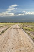 stock photo of kilimanjaro  - Kilimanjaro with snow cap seen from Amboseli National Park in Kenya with a road in the foreground - JPG