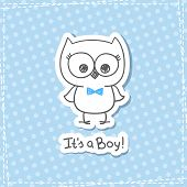 stock photo of owls  - vector hand drawn baby owl - JPG