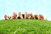pic of summer fun  - Image of several legs lying on the grass and resting - JPG