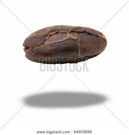 Peeled Cocoa Seed
