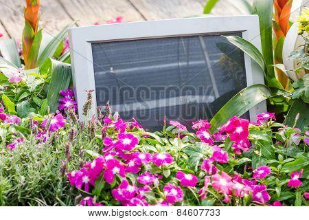 Old Computer In Garden