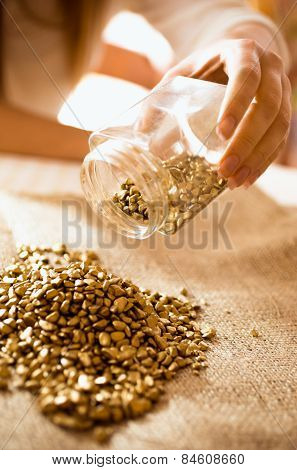 Closeup Shot Of Miner Empties The Jar With Gold On The Burlap