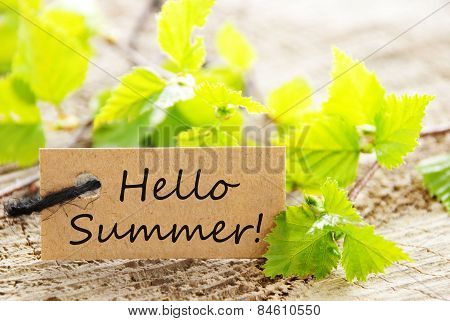Label With Hello Summer