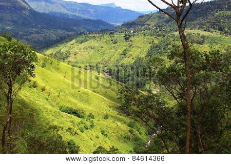 Highlands in Sri Lanka