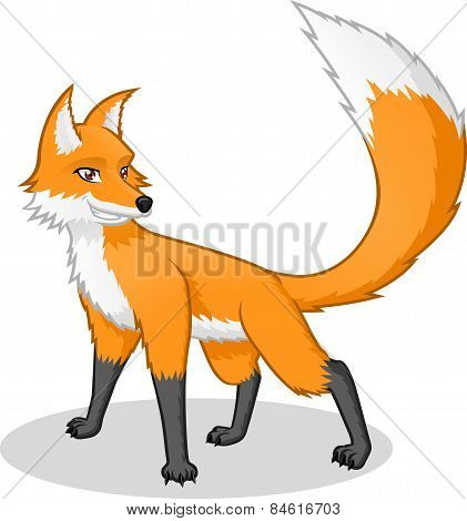 High Quality Fox Vector Cartoon Illustration
