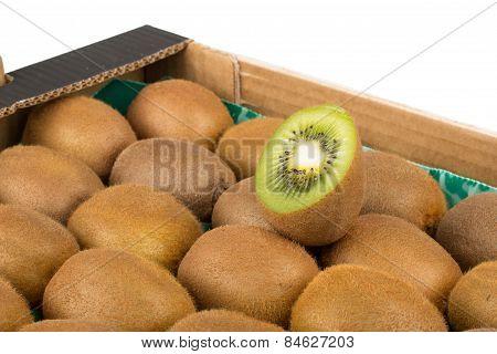 Green and yellow kiwi