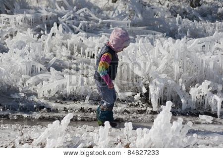 Little Girl On A Walk Amongst The Ice